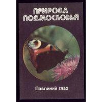 Природа Подмосковья Павлиний глаз
