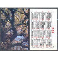 Календарь 1989 г. лот 2.