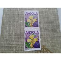 Ангола флора