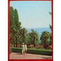 Крым. Алупка. В парке. Чистая. 1971 года. *382.