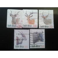 ЮАР 1998 антилопы полная серия