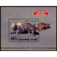 Кошки. Корея КНДР 1989. Блок. Чистый