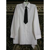 Парадная белая рубашка(РАЗМЕР 48-4) и галстук