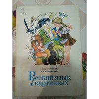 Книга Русский язык в картинках