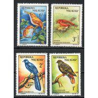 Птицы Мадагаскар 1963 год 4 марки