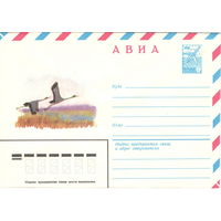 Конверт СССР АВИА, Два даурских журавля, 1981