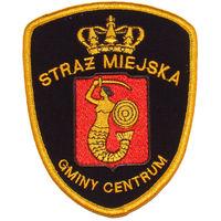 Полиция г. Варшава (гминный центр)