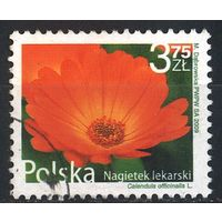 2009 - Польша - Стандарт - Ноготки Mi.4439