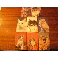 Календари 1990 г. Коты