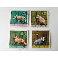 Польша 1964. Животные.