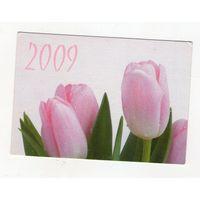 2009 тюльпаны (10)