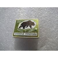 Значок. Охрана природы. Бурый медведь. (керамическая вставка)