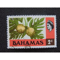 Багамы 1971 г. Флора.