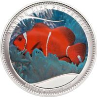 "Палау 5 долларов 2011г. ""Анемон"". Монета в капсуле; сертификат. СЕРЕБРО 25гр."