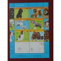 Аргентина 2006г. Собаки.