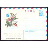 СССР 1981 флора шиповник