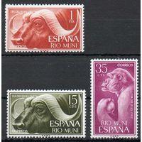 Испанская Гвинея. Рио-Муни. День почтовой марки. Животные 1962 год чистая серия из 3-х марок