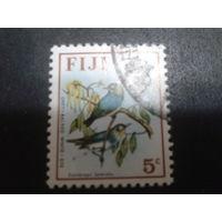 Фиджи колония Англии 1971 стандарт птица