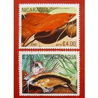 Никарагуа. Рыбы. ( 2 марки ) 1981 года.