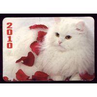 1 календарик 2010 год Кошка
