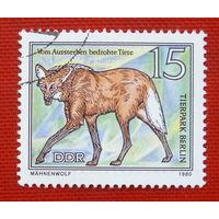 ГДР. Фауна. ( 1 марка ) 1980 года.