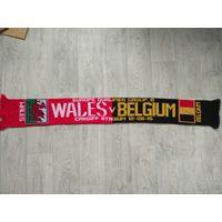 Уэльс - Бельгия. Чемпионат Европы.