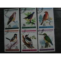 Марки - фауна, Корея, птицы