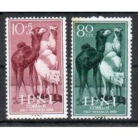 Верблюды Испанское Марокко Ифни 1959 год 2 марки