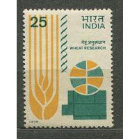 Изучение пшеницы. 1978. Индия. Полная серия 1 марка. Чистая