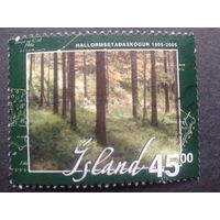 Исландия 2005 лес