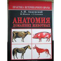 Анатомия домашних животных ( собак ).