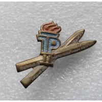 Значок. Пионерия ГДР. Зимний спорт 2-я степень. Лыжи #0255