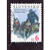 Словакия. Международные соревнования по гонкам на собачьих упряжках. Доновалы