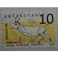 Казахстан.2013.сайгак