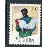 Замбия. Торговля. Петух