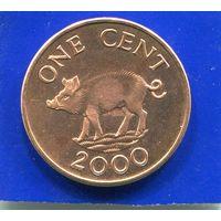 Бермудские острова 1 цент 2000 UNC