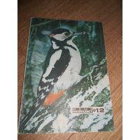 Журнал Юный натуралист 1975 #12