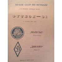 1991 год кубок ссср 1/16 финала  Полесье Житомир--Динамо Минск