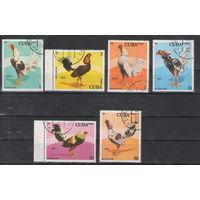 Куба Петухи 1981 год полная гашеная серия из 6-ти марок