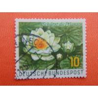 Германия 1957г. Флора.