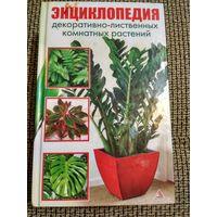 Энциклопедия декоративно-лиственных комнатных растений