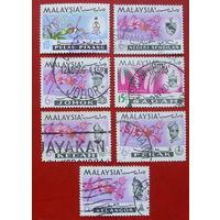 Малайзия. Цветы. ( 7 марок ) 1965 года.