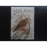 Малави 1988 птица