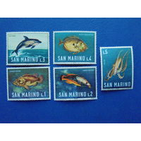 Сан-Марино 1966г. Морская фауна.