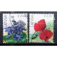 Латвия цветы стандарт-2014