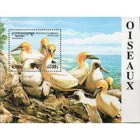 Морские птицы Камбоджа 2000 год 1 блок