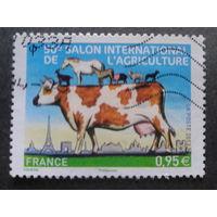 Франция 2013 домашние животные, выставка