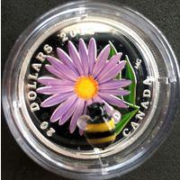Монета 3Д  $20 canada aster bee 2012