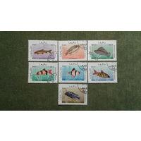 Марки Афганистан рыбки