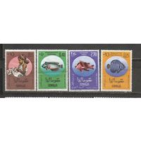 ЛС Сомали 1962 Рыбы
